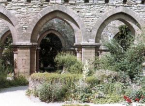 Burg Wendelstein und Klosterruine Memleben